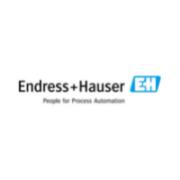 Endress + Hauser | Sponsor Biogas Italy 2021